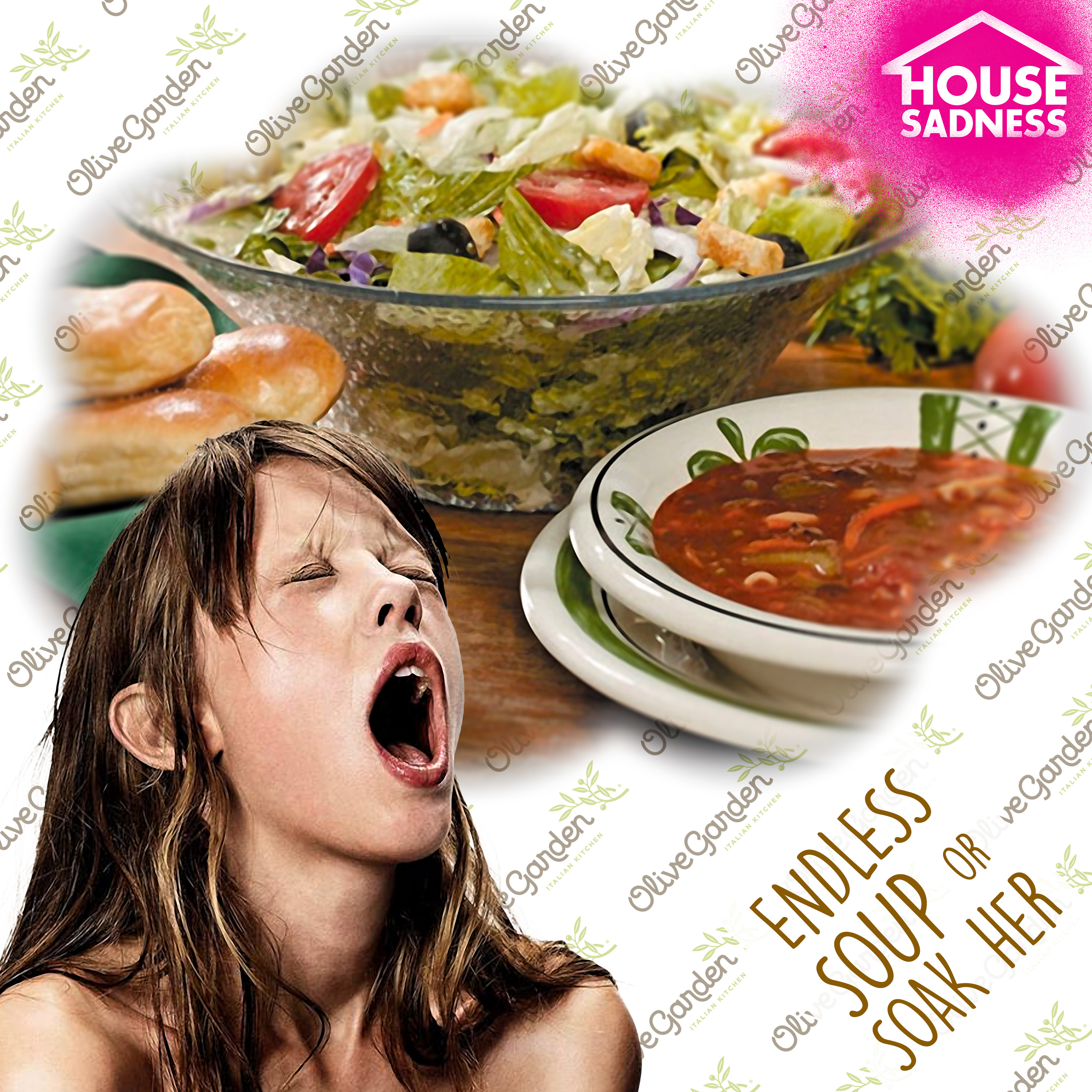 OLIVE GARDEN\'S ENDLESS SOUP OR SOAK-HER – House Sadness
