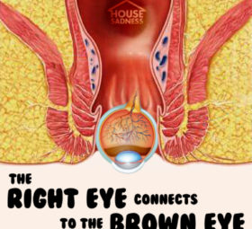 House Sadness Episode 81 The Right Eye Connects to the Brown Eye